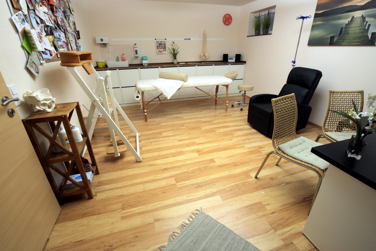 naturheilpraxis burgemeister praxis. Black Bedroom Furniture Sets. Home Design Ideas